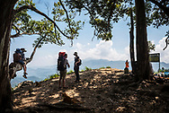 A family enjoys the mountainous landscape viewed from Ella Rock, a popular viewpoint on the outskirts of Ella, Sri lanka. The father hikes with a baby carrier, and two sons climb on a tree limb.