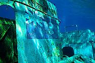 Bridge deck logo, USS Kittiwake