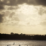 Surfers paddle into and ride waves in Noosa Heads, Australia.