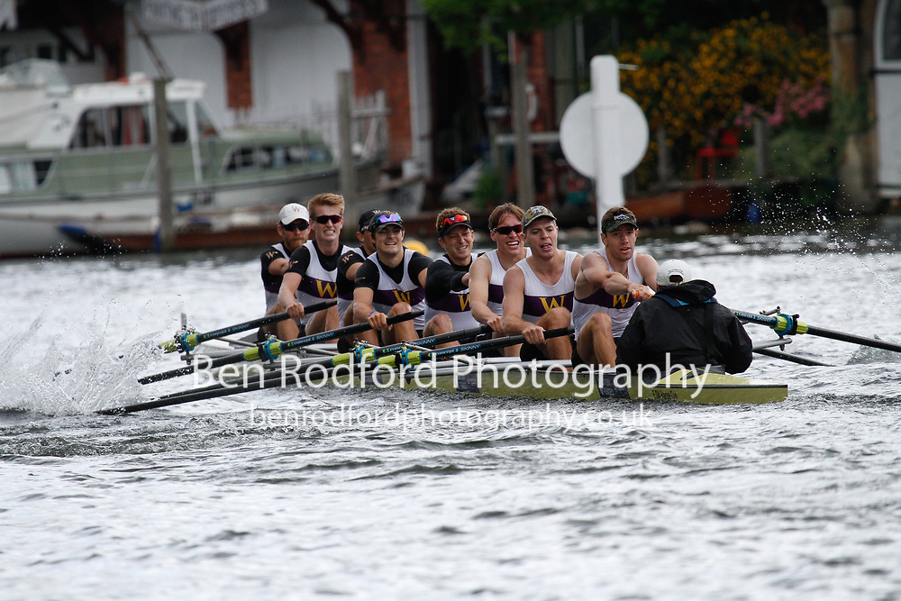 154   Williams College, U.S.A. - The Temple Challenge Cup<br /> <br /> Henley Royal Regatta Qualifiers {iptcyear4}<br /> <br /> To purchase this photo, or to see pricing information for Prints and Downloads, click the blue 'Add to Cart' button at the top-right of the page.