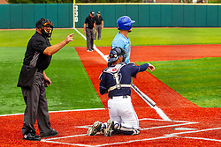 25 May 2019:  Umpire Bill McGuire calls a strike. Missouri Valley Conference Baseball Tournament - Dallas Baptist Patriots v Indiana State Sycamores at Duffy Bass Field in Normal IL<br /> <br /> #MVCSPORTS