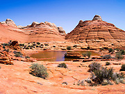 A rainwater catchment at North Coyote Buttes , Vermillion Cliffs National Monument, Arizona, known for its beautiful rock formations.