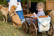 Arkansas, AR, USA, Old Washington State Park, Civil War Weekend. a family at a military camp. A child in a dog pulled cart