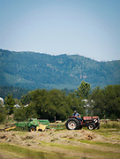 Farmer Don Leidel glances back off his tractor as bales of hay begin to pile up on his Prairie Avenue farm just east of McGuire Road in Post Falls on Wednesday, July 7, 2010.