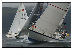 The second days racing at the Bell Lawrie Yachting Series in Tarbert Loch Fyne ...Strong winds, high seas and heavy rain dominated the day...National Impala class, GBR9596, Fly, Peter Duggan, Oban SC GBR9544, Mersonary, GBR9582, Lammergeyer .