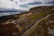 A bear trail crosses Dumpling Mountain in Katmai National Park, Alaska