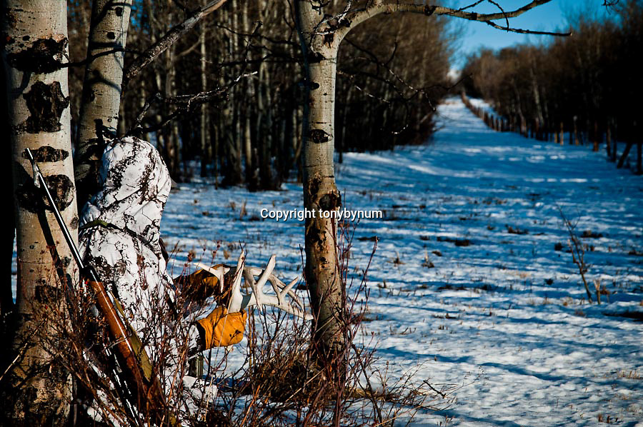 hunting hunting winter conditions, edgy, high contrast edgy commercial