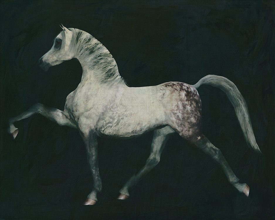 Horses are graceful and are also called noble animals. This painting of an Arabian horse doing a dressage exercise will certainly add value to any interior. Horses are unmissable in a rural environment. Not only in a country house will this painting of a horse come into its own. Also in a city environment horses can add just that little bit more to your interior. –<br /> -<br /> BUY THIS PRINT AT<br /> <br /> FINE ART AMERICA / PIXELS<br /> ENGLISH<br /> https://janke.pixels.com/featured/6-horses-white-horse-doing-dressage-exercise-jan-keteleer.html<br /> <br /> <br /> WADM / OH MY PRINTS<br /> DUTCH / FRENCH / GERMAN<br /> https://www.werkaandemuur.nl/nl/shopwerk/Paard-doet-een-dressuur-oefening/770262/132?mediumId=1&size=70x55<br /> –<br /> -