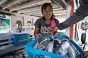 Meity Masipuang is a member of an enterprise group in Papusungan village.  Their womens group purchases fish to smoke and resell as part of a added value chain and zero waste income project.  The villagers have benefited from enterprise groups, new boats, fishing equiptment, marine protected areas and ecotourism projects supported by the Indonesia Government and IFAD through the Coastal Community Development Project.