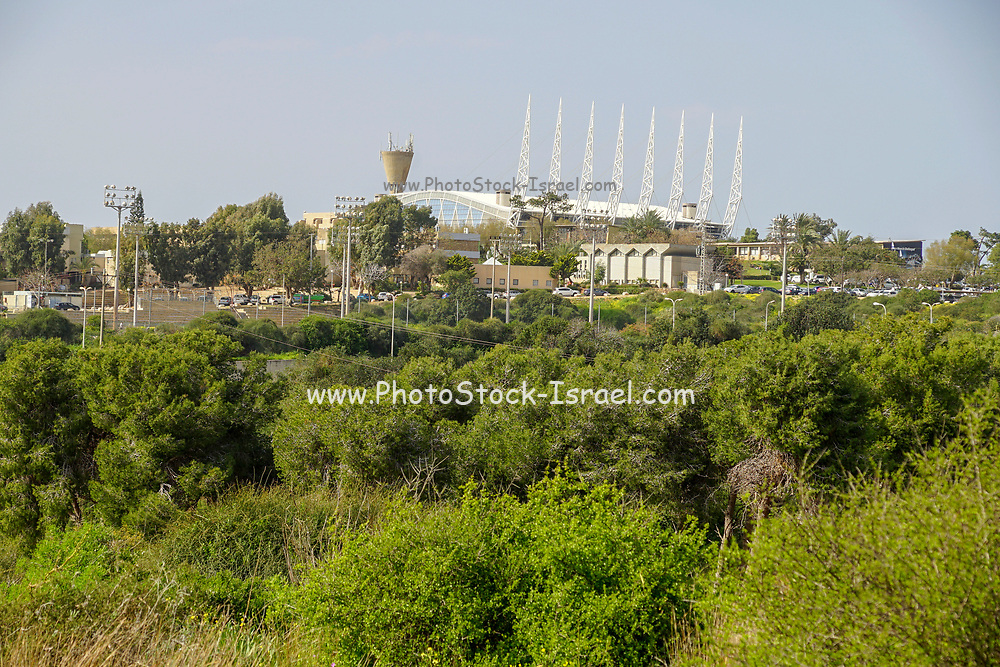 Poleg River Nature Reserve - Yakum Park, Near Natanya, Israel. The  Wingate Institute in the background