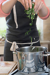 Woman filling chopped mangold leaf vegetable in pot