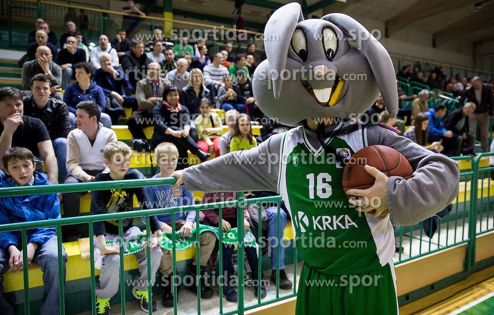 Mascot Rabitt during basketball match between KK Krka Novo mesto and Reggio Emilia (ITA) in EuroChallenge 2013/14 on February 25, 2014 at Sportna dvorana Leona Stuklja, Novo mesto, Slovenia. Photo by Vid Ponikvar / Sportida