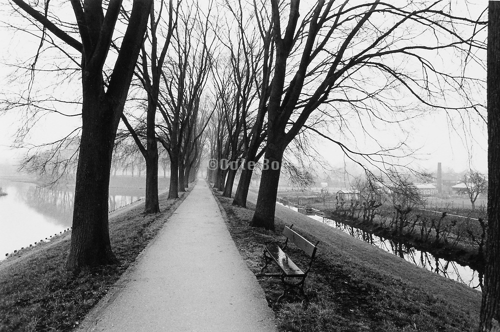 Tree lined path and bench Holland.