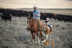 """Bryan Ulring helps his son, Charlie, 4, herd cattle for the first time on a sunny November morning at the J Bar L Ranch in the Centennial Valley of Montana. The J Bar L ranch finish their cattle on grass, in contrast to the vast majority of ranches in the U.S. that send cattle to feedlots. The 2,000 head at J Bar L """"never go into a feedlot,"""" said Ulring, adding that the ranch is one of the biggest grass finishers in the state. The Centennial Valley is an important wildlife corridor for elk, moose, antelope, deer, wolverines, grizzly bears, wolves and hundreds of bird species. The valley is largely owned by a handful of large ranches, which means their use of the land impacts the local environment. © Ami Vitale"""