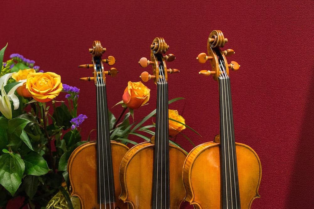 Instruments from the Brobst Violin Shop in Alexandria, Virginia.