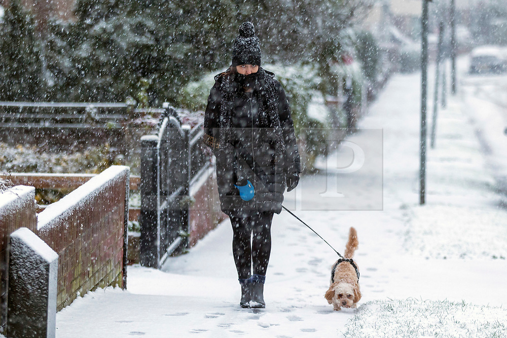 © Licensed to London News Pictures. 14/01/2021. Leeds UK. A woman walks her dog in the snow this morning in Leeds after heavy snowfall this morning in Yorkshire. Photo credit: Andrew McCaren/LNP
