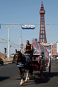 A man drives a horse and carriage up the main strip with the world famous Blackpool Tower in the background as temperatures in the country are expected to soar this week on 7th September, 2021 in Blackpool, United Kingdom. Temperatures in the UK are predicted to soar to highs of 29 degrees celsius, coinciding with a rise in daycation and staycation domestic tourism in the country as a result of Covid-19 precautions that make foreign travel increasingly costly and difficult.