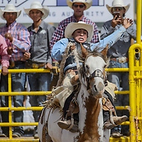 Creighton Curley competes in the saddle bronc competition of the Navajo Nation Fair Rodeo Saturday in Window Rock.