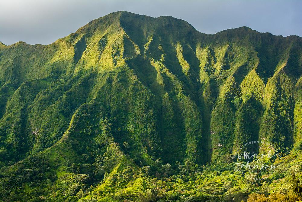Early morning sun shines on the vertical cliffs of the Koolau Mountain Range, Oahu, Hawaii