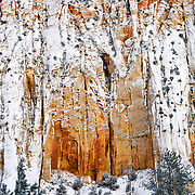The red sandstone walls of Zion National Park in Utah covered with a fresh dusting of snow.
