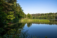 the lake Pionierbecken 3 in the Koenigsforest near Cologne, North Rhine-Westphalia, Germany. The Pionierbecken (pioneer ponds) are former gravel pits.<br /> <br /> der See Pionierbecken 3 im Koenigsforst bei Koeln, Nordrhein-Westfalen, Deutschland. Die Pionierbecken sind ehemalige Kiesgruben.