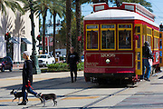 Man walking dogs past streetcar in Canal Street in New Orleans, Louisiana, USA