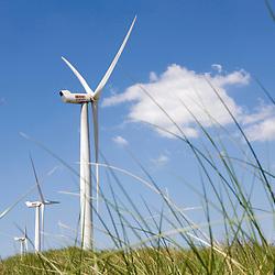 Netherlands - June 2009 - Wind Power - Energy - Sun - Blue Sky - Green Power - Nature - Electricity .. .© Scorpix / P.Mascart.