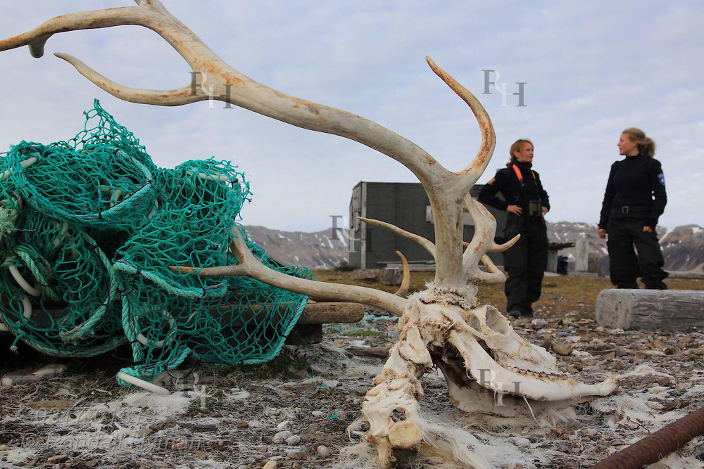 Police officer Cecilie Sørensen and naturalist Ragnhild Røsseland of governor's office (Sysselmannen) discover  reindeer that died with antlers entangled in fishing net improperly stowed along shore of Spitsbergen island near Kongsfjorden; Svalbard, Norway.
