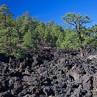 North America, USA, Arizona, Flagstaff.  Sunset Volcano Crater landscape.
