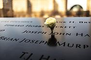 NEW YORK  2020V10<br /> Ros vid minnesmonumentet Ground Zero.<br /> <br /> Foto: Per Danielsson/Projekt.P