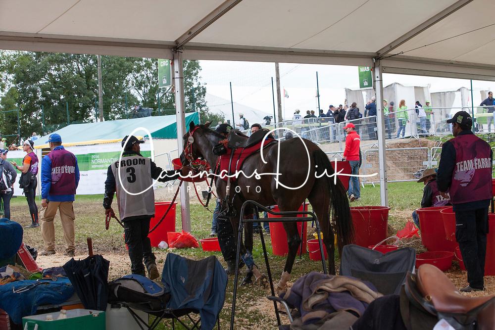 HE Sheikh Hamdan Bin Mohd Al Maktoum, (UAE), Yamamah<br /> Endurance - Alltech FEI World Equestrian Games™ 2014 - Normandy, France.<br /> © Hippo Foto Team - Jantien Van Zon