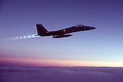F-15 Eagle, Louisiana Air Guard