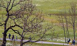 THEMENBILD - Spaziergänger auf einem Weg aufgenommen am 29. April 2017, Kaprun, Österreich // People walk on a path at Kaprun, Austria 2017/04/29. EXPA Pictures © 2017, PhotoCredit: EXPA/ JFK