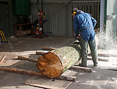 Salix Sawmill
