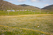 Croft farmhouses in small village of Borgh, Barra, Outer Hebrides, Scotland, UK
