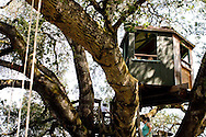 children playing on tree swings and tree houses
