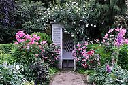 Perennial Garden with rose trellis