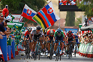 Arrival sprint, Peter Sagan (SVK - Bora - Hansgrohe), Alejandro Valverde (ESP - Movistar) green jersey, during the UCI World Tour, Tour of Spain (Vuelta) 2018, Stage 8, Linares - Almaden 195,1 km in Spain, on September 1st, 2018 - Photo Luca Bettini / BettiniPhoto / ProSportsImages / DPPI