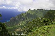 Kalalau Valley, Napali Coast ( north coast ), Kauai, Hawaii, USA ( Central Pacific Ocean )