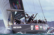 Team New Zealand, Race five of the 31st America's Cup. 2/3/2003 (© Chris Cameron 2003)