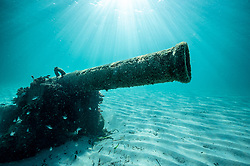 Omeo Wreck Dive Trail at Coogee Beach, Perth, Western Australia. 15 May 2020. Photo: Drew Malcolm