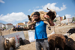 People prepare to sacrifice animals during Eid-al-Adha celebrations in Istanbul, Turkey on August 21, 2018. Muslims across the world are celebrating the annual festival of Eid al-Adha or the festival of sacrifice which marks the end of the Hajj pilgrimage to Mecca and commemorates prophet Abraham's readiness to sacrifice his son to show obedience to God. Photo by Depo Photos/ABACAPRESS.COM
