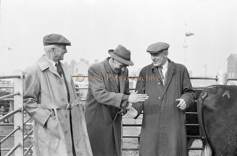 Salesman Richard Kenny watches a bargain struck between Abbey Thompson and George Walker at the Dublin Cattle Market..25.04.1962<br /> Prussia Street NCR <br /> Icon images, photo of IrelandCastlebar,County Mayo,<br /> Icon images, photo of IrelandMidleton,County Cork,<br /> Icon images, photo of IrelandMallow,County Cork,<br /> Icon images, photo of IrelandAshbourne,County Meath,<br /> Icon images, photo of IrelandBallina,County Mayo,<br /> Icon images, photo of IrelandLaytown-Bettystown-Mornington,County Meath,<br /> Icon images, photo of IrelandEnniscorthy,County Wexford,<br /> Icon images, photo of IrelandWicklow,County Wicklow,<br /> Icon images, photo of IrelandTramore,County Waterford,<br /> Icon images, photo of IrelandCavan,County Cavan,<br /> Icon images, photo of IrelandAthy,County Kildare,<br /> Icon images, photo of IrelandShannon,County Clare,<br /> Icon images, photo of IrelandSkerries,County Dublin,<br /> Icon images, photo of IrelandLongford,County Longford,<br /> Icon images, photo of IrelandDungarvan,County Waterford,<br /> Icon images, photo of IrelandPortmarnock,County Dublin,<br /> Icon images, photo of IrelandRush,County Dublin,<br /> Icon images, photo of IrelandGorey,County Wexford,<br /> Icon images, photo of IrelandRatoath,County Meath,<br /> Icon images, photo of IrelandNenagh,County Tipperary,<br /> Icon images, photo of IrelandTrim,County Meath,<br /> Icon images, photo of IrelandTuam,County Galway,<br /> Icon images, photo of IrelandNew Ross,County Wexford,<br /> Icon images, photo of IrelandKildare,County Kildare,<br /> Icon images, photo of IrelandThurles,County Tipperary,<br /> Icon images, photo of IrelandYoughal,County Cork,<br /> Icon images, photo of IrelandPortarlington,County Laois, County Offaly,<br /> Icon images, photo of IrelandMonaghan,County Monaghan,<br /> Icon images, photo of IrelandLusk,County Dublin,<br /> Icon images, photo of IrelandEdenderry,County Offaly,