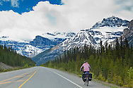 The Icefields Parkway stretches 230 km (142 miles) between Lake Louise and the town of Jasper and travels through the heart of the Canadian Rockies.  The highway parallels the Main Ranges of the Canadian Rockies within Banff and Jasper National Parks.  The peaks of the mountains visible from the highway can reach an altitude of 3300 meters (11,000 feet).  Many glacially fed streams and lakes can be seen and visited along the way.  The parkway is popular with cyclists.