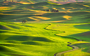 Washington's Palouse region.