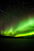 View of ther Aurora Borialis from a frozen lake in Lapland, Sweden.