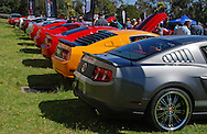 Mustang Owners Club of Australia (MOCA) Vic Annual Mustang Round Up and Concours.Dandenong Showgrounds, Bennett St Dandenong .24th of October 2010.(C) Joel Strickland Photographics.Use information: This image is intended for Editorial use only (e.g. news or commentary, print or electronic). Any commercial or promotional use requires additional clearance.