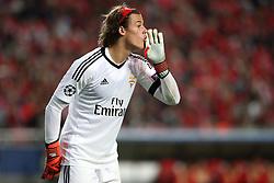 Benfica goalkeeper Mile Svilar
