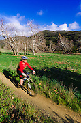 Female mountain biker in Sycamore Canyon, Point Mugu State Park, California USA