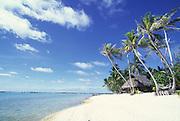 Kia Ora Sauvage, Rangiroa, French Polynesia<br />